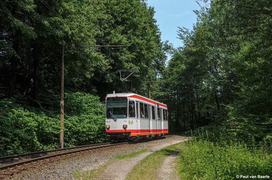 Als een interlokale tramlijn kronkelt lijn 310 nu nog enkelsporig door het bos bij Papenholz, 4 juni 2011. In de toekomst zal dit gedeelte komen te vervallen. Foto: Paul van Baarle.