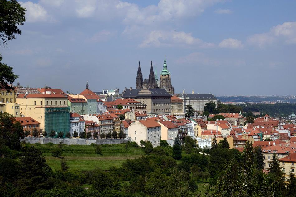 <i>Gezicht op het waarmerk van de stad vanuit de wijngaarden: De Praagse burcht (Pražský hrad). Foto: Ernst van Gulden, 17 juli 2013.</i>